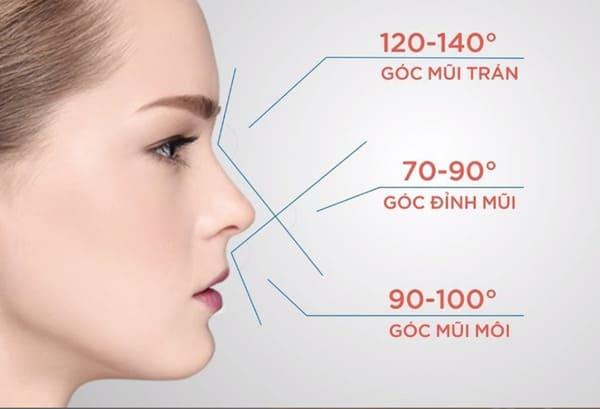 yếu tố tạo nên dáng mũi đẹp